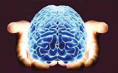 左脑和右脑的区别有哪些_WWW.171ZZ.NET