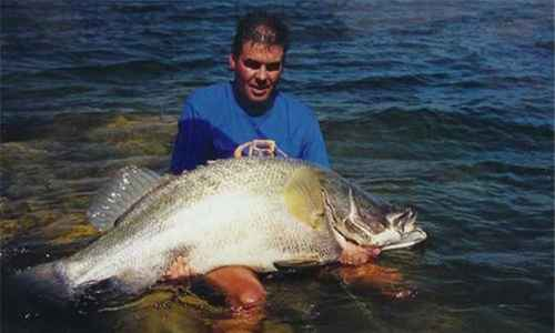 世界上最大的鱼排行榜_WWW.171ZZ.NET