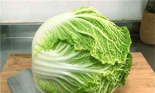 白菜是酸性还是碱性_WWW.171ZZ.NET