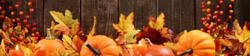 秋天有什么特点_WWW.171ZZ.NET