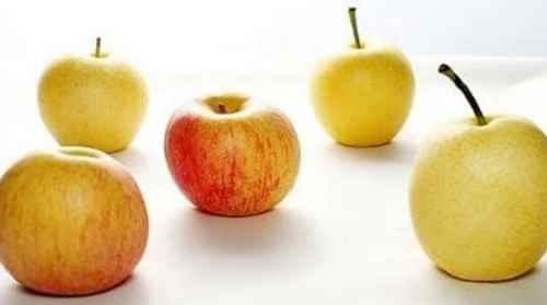 苹果和梨能一起吃吗_WWW.171ZZ.NET