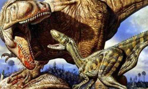 非洲大型食肉恐龙_WWW.171ZZ.NET