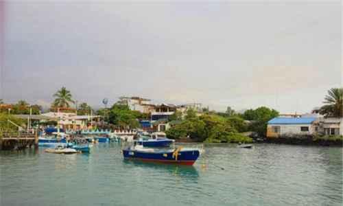 世界上最拥挤的小岛_WWW.171ZZ.NET