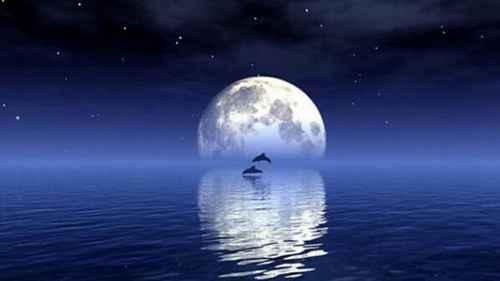 月亮属于什么星_WWW.171ZZ.NET