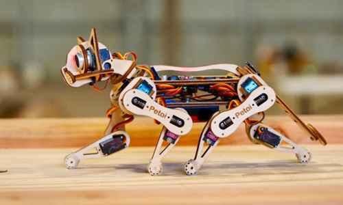 世界上最快的机器猫_WWW.171ZZ.NET