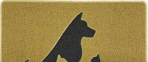 《狗猫鼠》的主要内容是什么?_WWW.171ZZ.NET