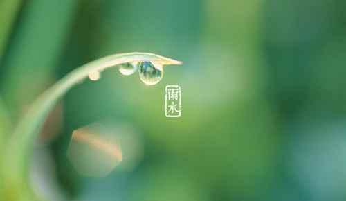 关于雨水节气的文案有哪些?_WWW.171ZZ.NET
