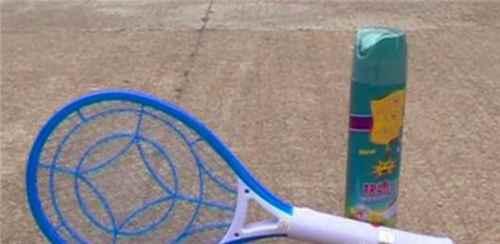 夏季如何健康安全使用电蚊拍?_WWW.171ZZ.NET