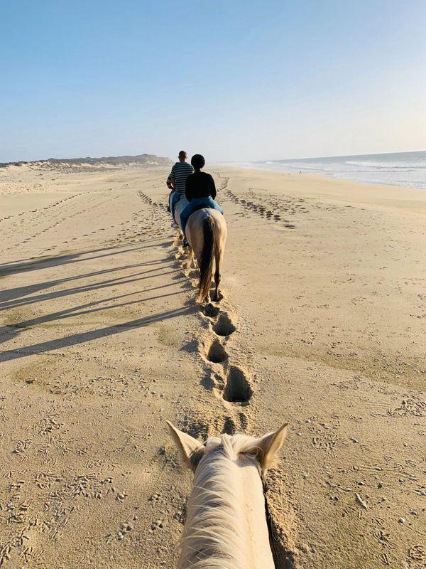 沙滩上骑马的人图片_WWW.171ZZ.NET