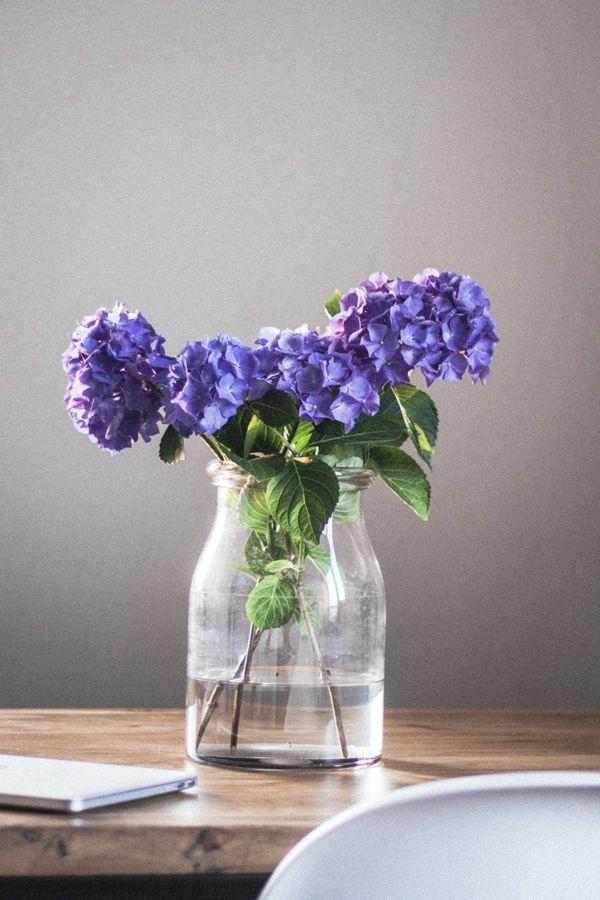 紫色花朵水培插花图片_WWW.171ZZ.NET