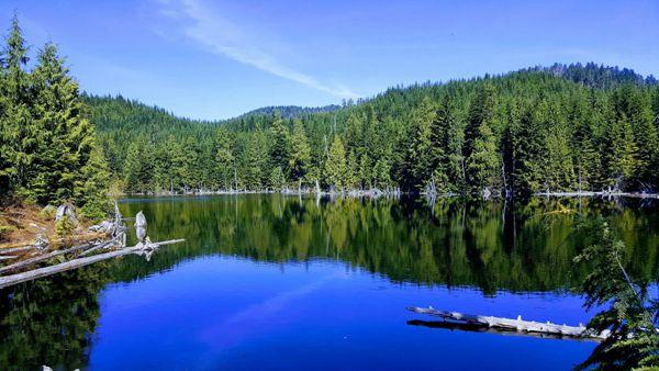 静谧湖泊绿色风景图片_WWW.171ZZ.NET